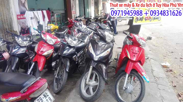Thuê xe máy giá rẻ Phú Yên 5