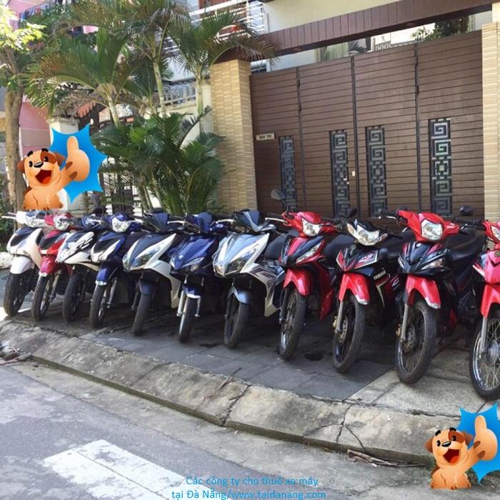 thuê xe máy Phú Yên 3